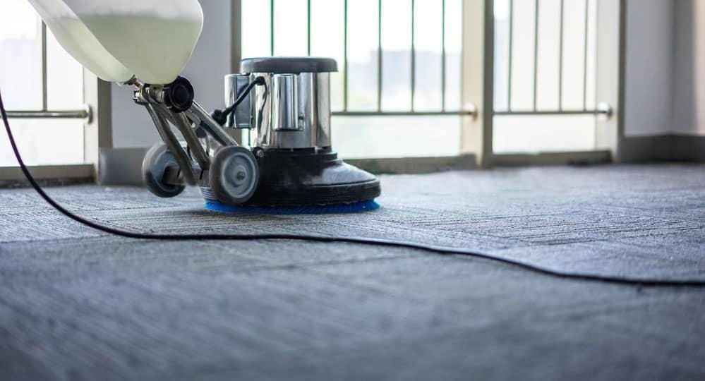 limpieza de alfombras en papudo